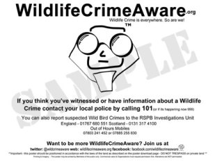 wildlifecrimeaware_publish_april2015sample